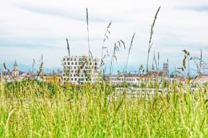 Ungewöhnliche Perspektive: Der Dom vom Olympiaberg aus gesehen. (Foto: Winderl)